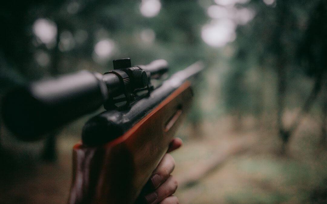 Zákaz používání olověného střeliva v okolí mokřadů (3.část) – jak jsem odpověděl panu Bretonovi